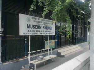 31-museum-biologi-jogja